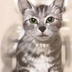 Cat_20100722_01