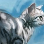 Cat20100722_001.
