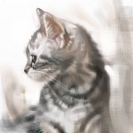 Cat_20100722_02