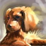 Dog_20100722_b05