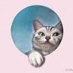 cat_20100725_01