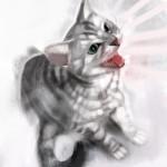 cat_20100725_05