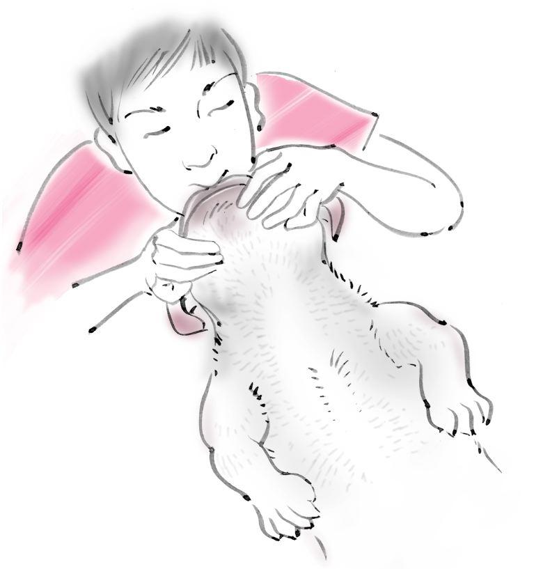 pet dog care_07
