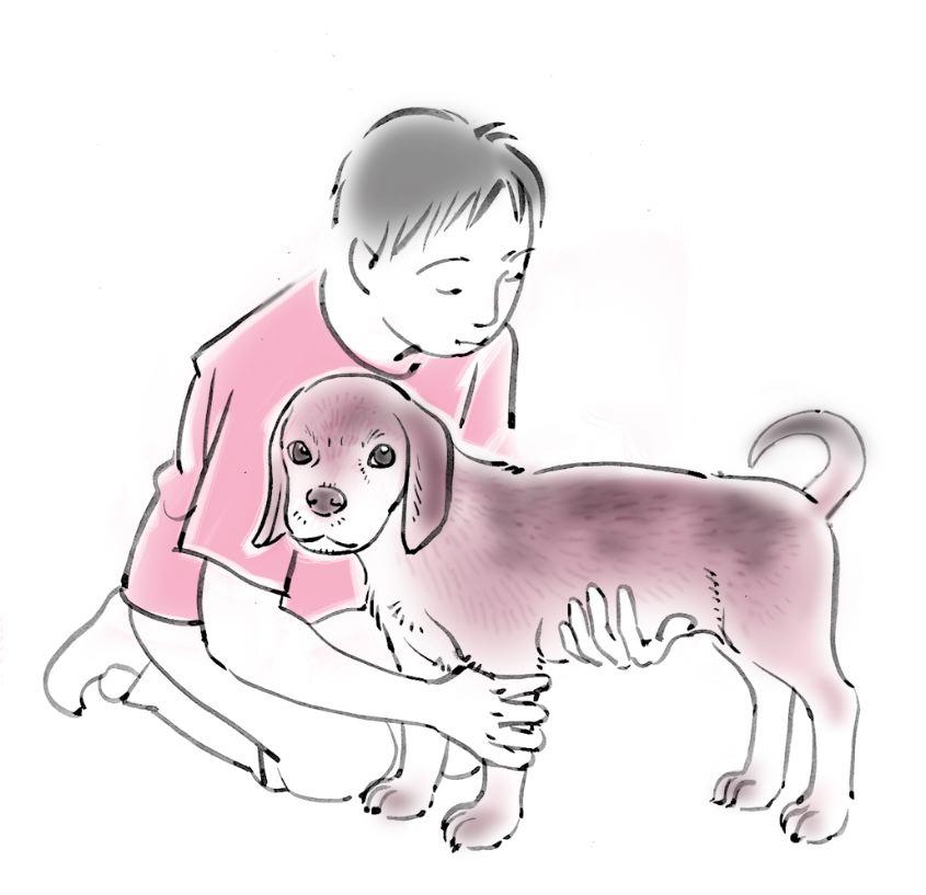 pet dog care_01