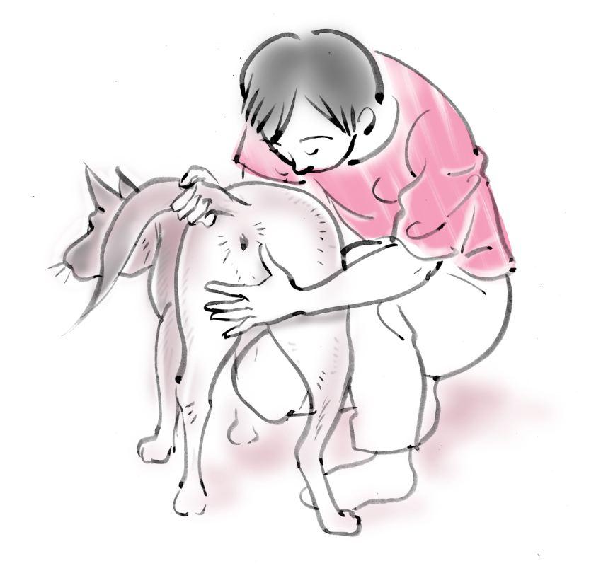 pet dog care_03